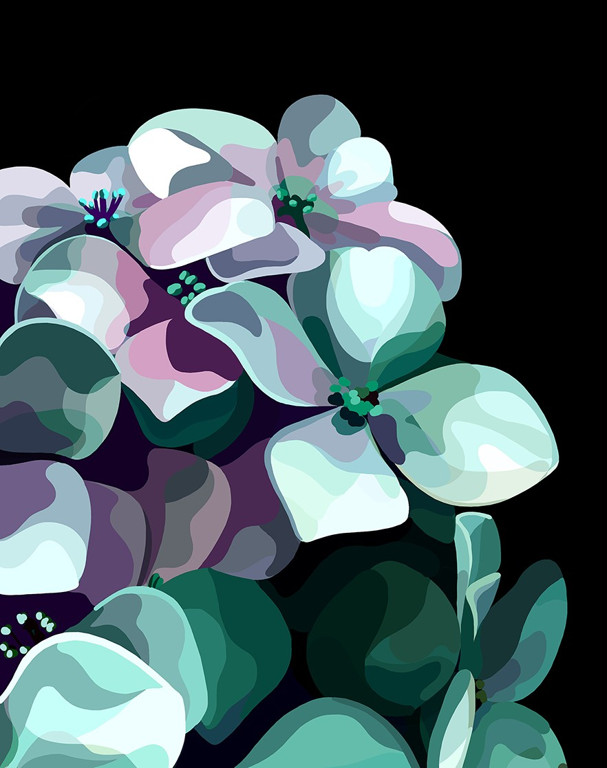illustration-mathilde-cretier-flowers-1.jpg - Mathilde CRETIER | Virginie